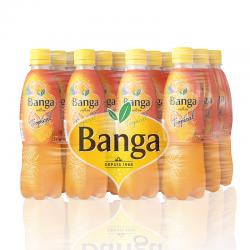 Banga Tropical pack 12x40cl